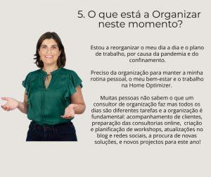 page 6 Susete Lourenço consultora em organização